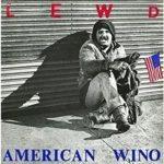 American Wino dei Lewd. Il punk più arrabbiato e asociale del periodo