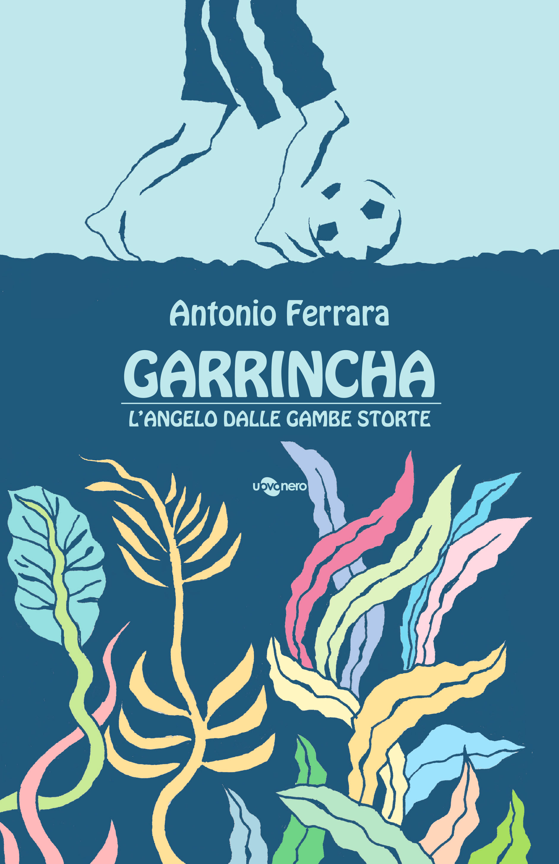 Garrincha, l'angelo dalle gambe storte Book Cover