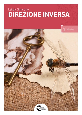 Direzione inversa Book Cover