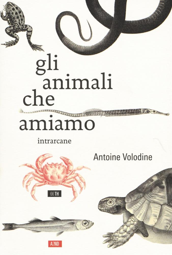 Gli animali che amiamo Book Cover
