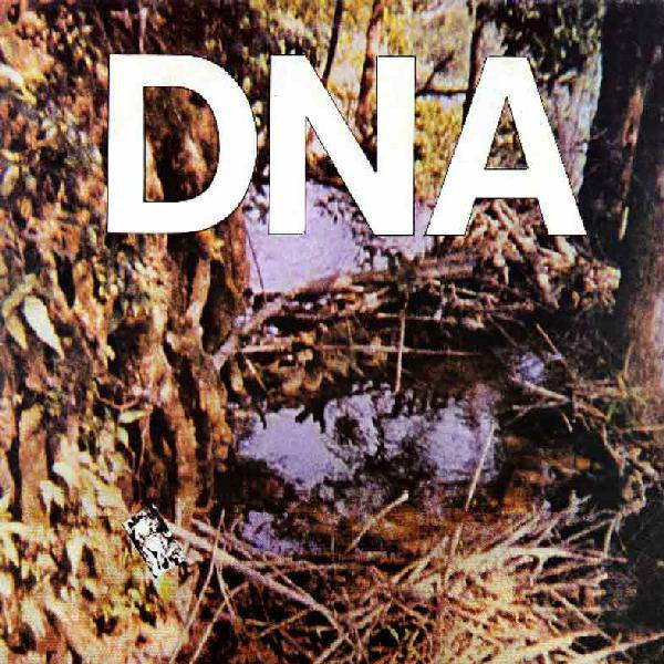 A Taste of DNA Book Cover
