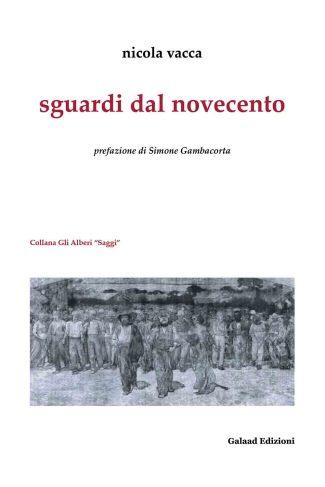 Sguardi dal Novecento Book Cover