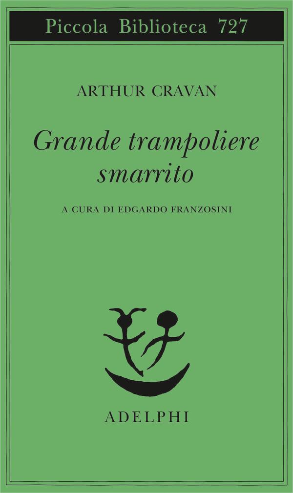 Grande trampoliere smarrito Book Cover