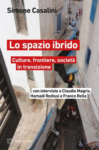 Lo spazio ibrido. Culture,frontiere, società in transizione Book Cover