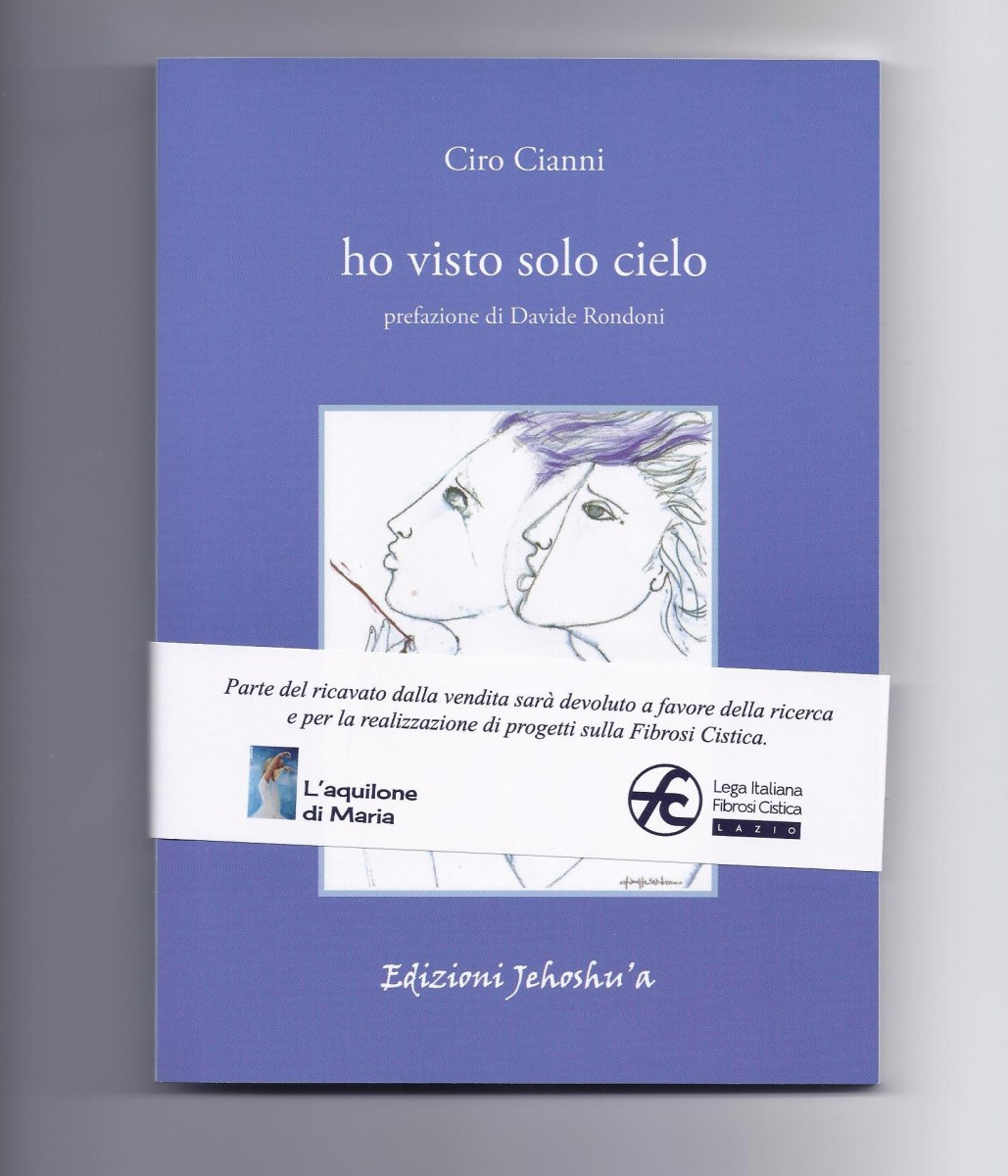 Ho visto solo cielo Book Cover