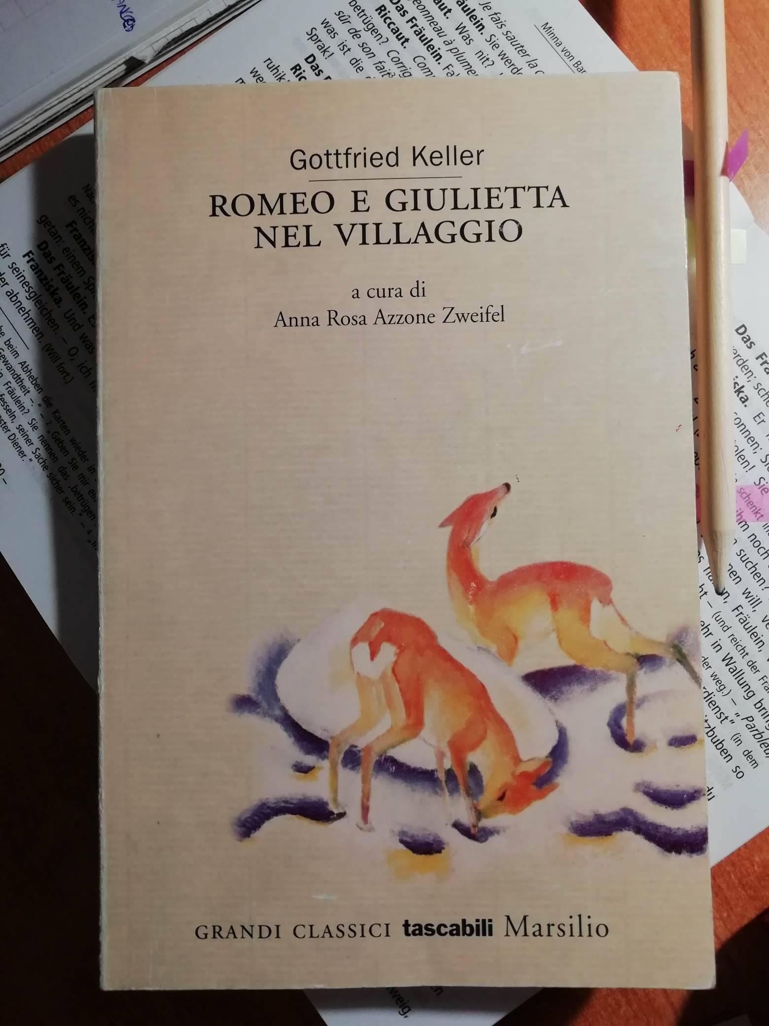 Romeo e Giulietta nel villaggio Book Cover